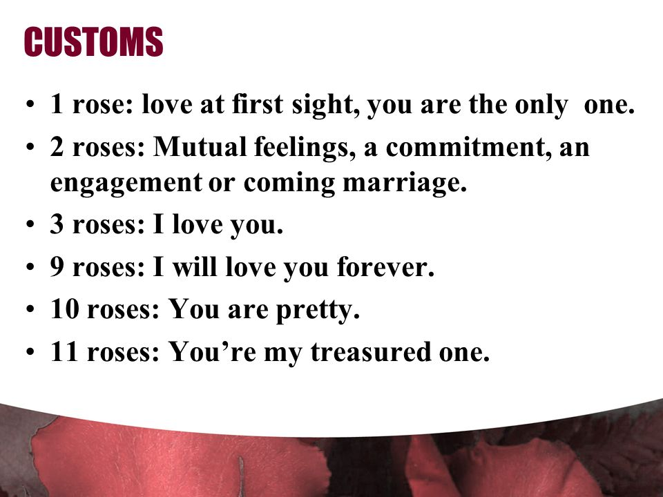 CUSTOMS 1 rose: love at first sight, you are the only one.
