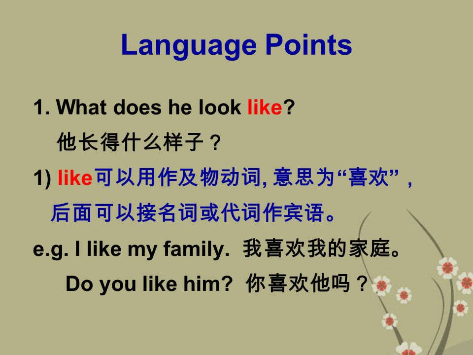 Language Points 1. What does he look like.