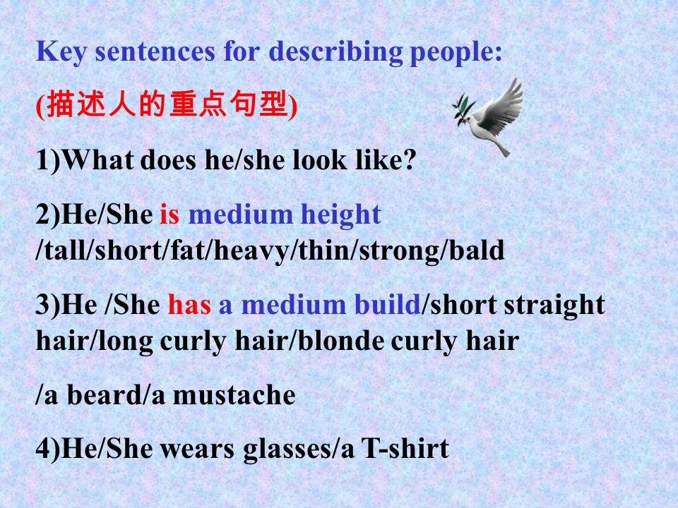 4)clothes( 服装 ): sweater, T-shirt, dress( 连 衣裙 ), skirt( 短裙 ), uniform( 制服 ), coat, pants( 裤子 ), shorts( 短裤 ), jeans( 牛仔裤 ), shoes( 鞋子 ) 5)glasses ( 眼镜 ) 6)good-looking 相貌好看的 ordinary-looking 相貌平平的 ugly-looking 相貌不好看的, 相貌丑的