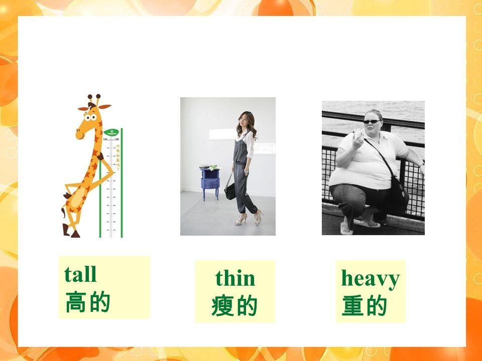 tall 高的 heavy 重的 thin 瘦的