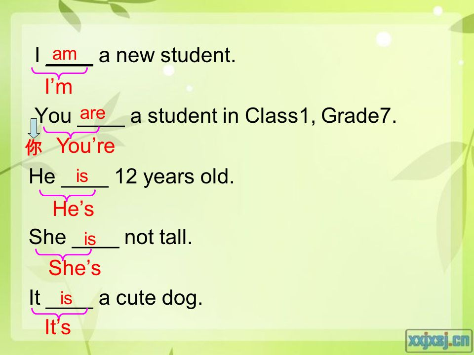 I ____ a new student. You ____ a student in Class1, Grade7.