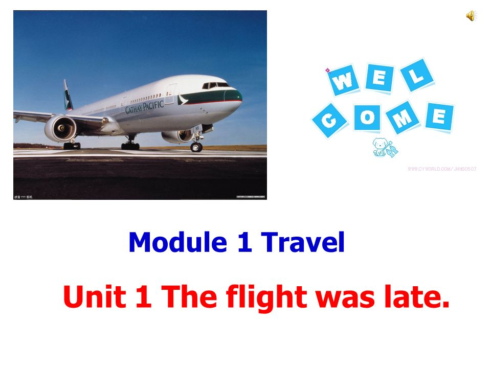 Module 1 Travel Unit 1 The flight was late.