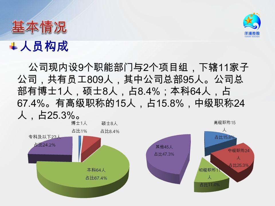人员构成 公司现内设 9 个职能部门与 2 个项目组,下辖 11 家子 公司,共有员工 809 人,其中公司总部 95 人。公司总 部有博士 1 人,硕士 8 人,占 8.4% ;本科 64 人,占 67.4% 。有高级职称的 15 人,占 15.8% ,中级职称 24 人,占 25.3% 。