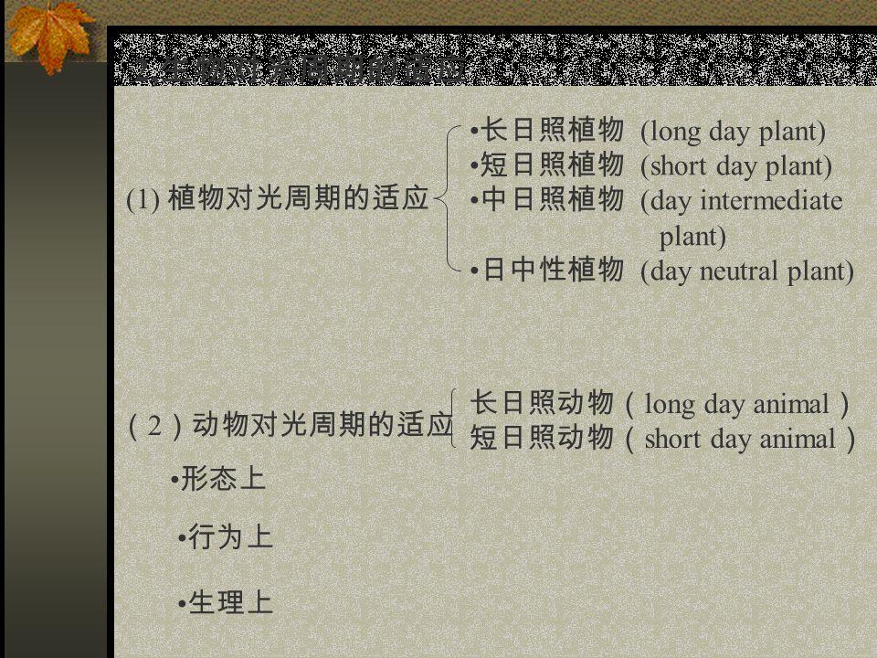 2, 生物对光周期的适应 (1) 植物对光周期的适应 长日照植物 (long day plant) 短日照植物 (short day plant) 中日照植物 (day intermediate plant) 日中性植物 (day neutral plant) ( 2 )动物对光周期的适应 形态上 行为上 生理上 长日照动物( long day animal ) 短日照动物( short day animal )