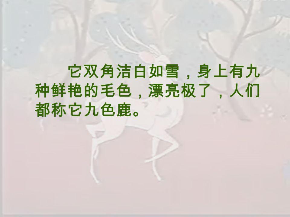 它双角洁白如雪,身上有九 种鲜艳的毛色,漂亮极了,人们 都称它九色鹿。