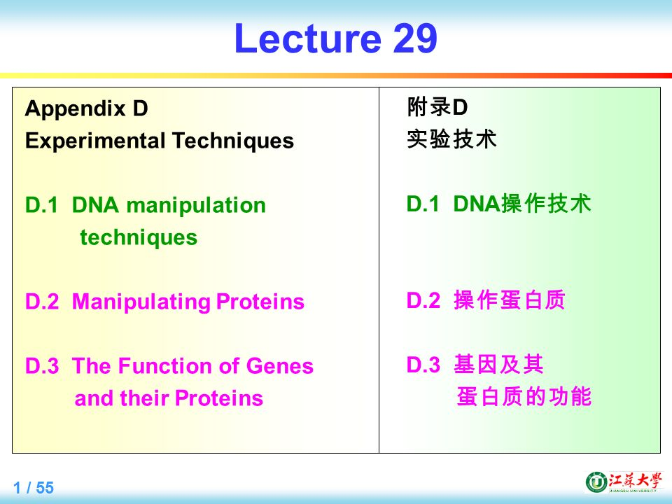 1 / 55 Lecture 29 Appendix D Experimental Techniques D.1 DNA manipulation techniques D.2 Manipulating Proteins D.3 The Function of Genes and their Proteins 附录 D 实验技术 D.1 DNA 操作技术 D.2 操作蛋白质 D.3 基因及其 蛋白质的功能
