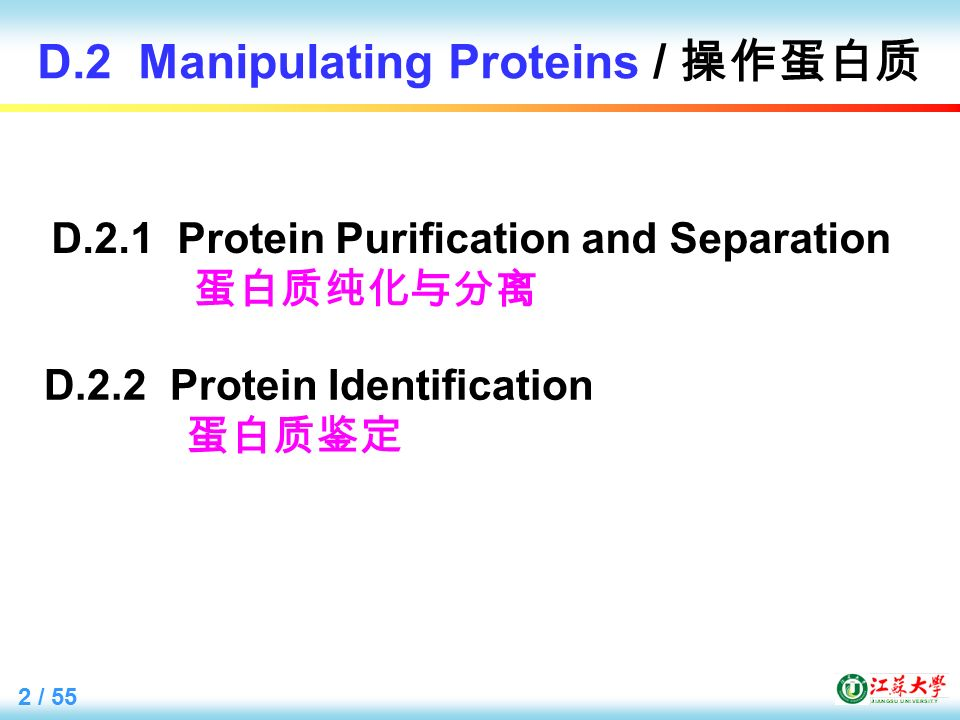 2 / 55 D.2 Manipulating Proteins / 操作蛋白质 D.2.2 Protein Identification 蛋白质鉴定 D.2.1 Protein Purification and Separation 蛋白质纯化与分离