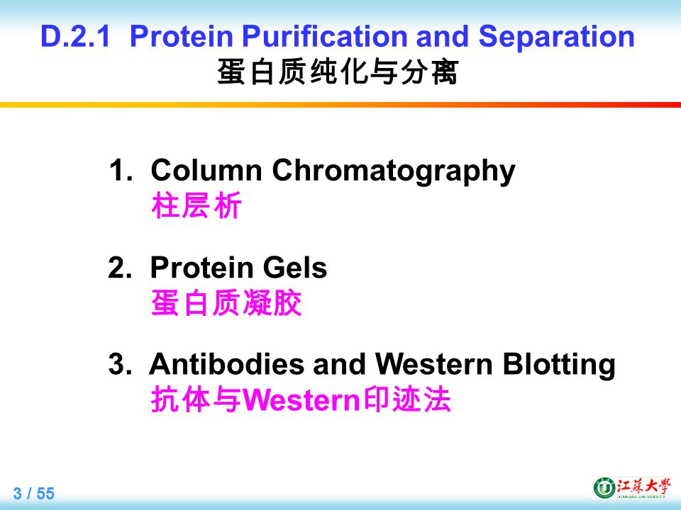 3 / 55 D.2.1 Protein Purification and Separation 蛋白质纯化与分离 1.