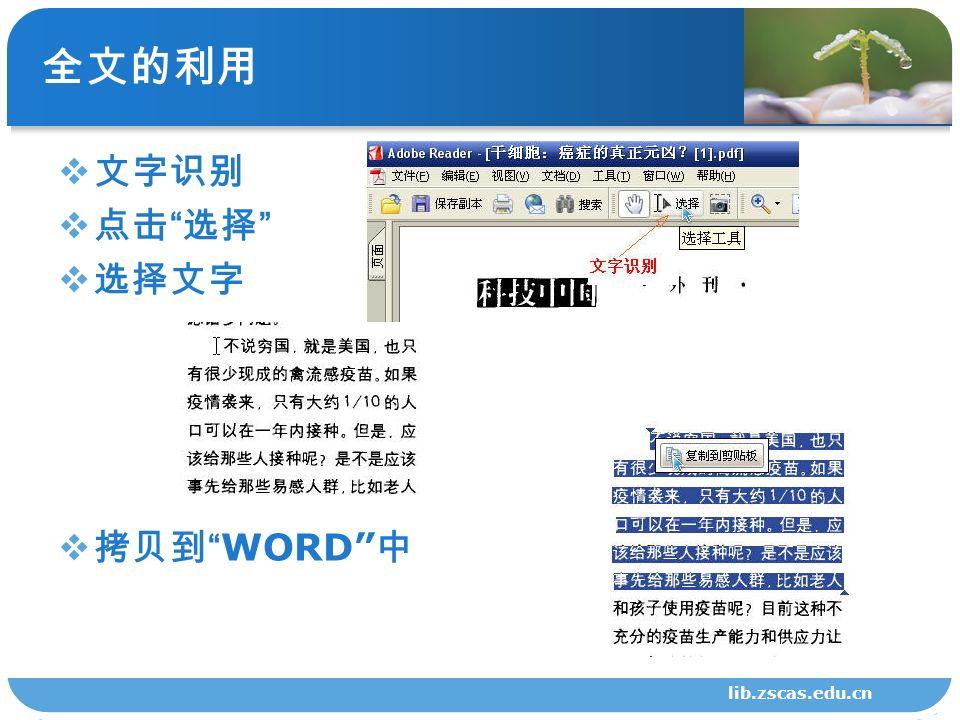 全文的利用  文字识别  点击 选择  选择文字  拷贝到 WORD 中