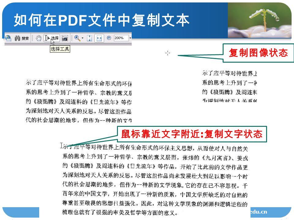如何在 PDF 文件中复制文本 lib.zscas.edu.cn 复制图像状态 鼠标靠近文字附近 : 复制文字状态