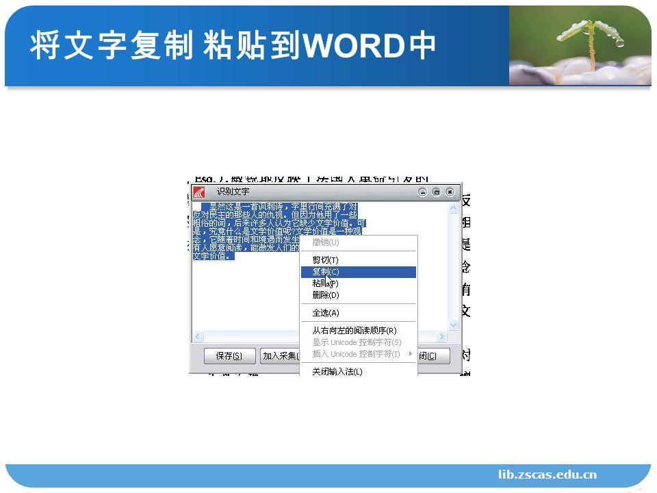 将文字复制 粘贴到 WORD 中 lib.zscas.edu.cn