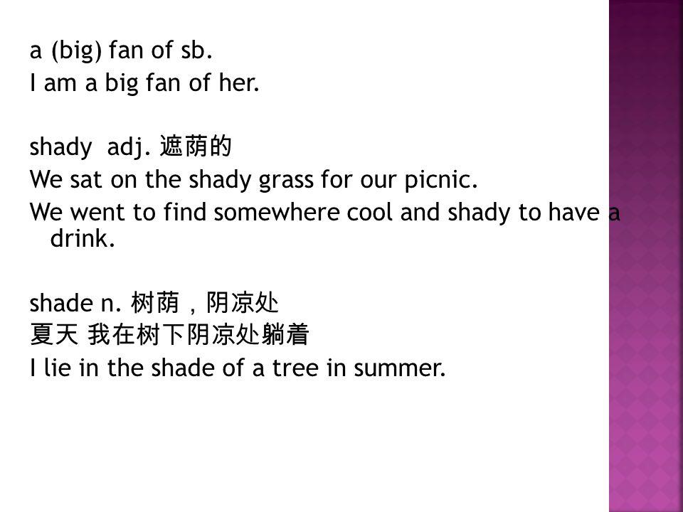 a (big) fan of sb. I am a big fan of her. shady adj.