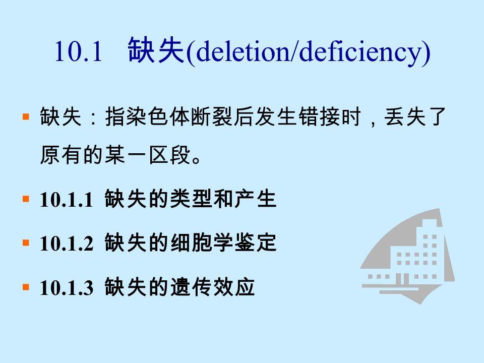 结构变异的形成机理:断裂重接假说  使染色体产生折断的因素: 内因:营养、温度、生理异常以及遗传因素等 外因:物理因素、化学药剂等  染色体折断的结果: 正确重接:重新愈合,恢复原状 错误重接:产生结构变异 保持断头:产生结构变异 ( 顶端缺失 )  结构变异的基本类型: 缺失、重复、倒位、易位..\genetic movies\ 染色体结构畸变类型.swf