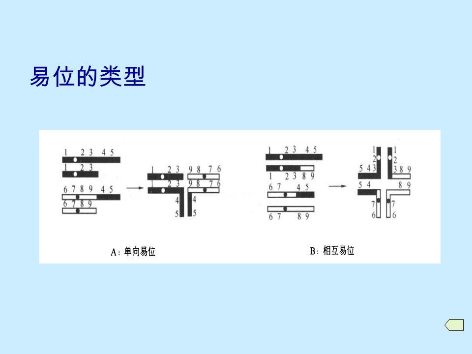 10.4.1 易位的产生和类型  易位的类别 插入易位 单向易位 相互易位  易位的形成  易位染色体的表示方法  相关术语 易位染色体 易位杂合体 (translocation heterozygote) 易位纯合体 (translocation homozygote)