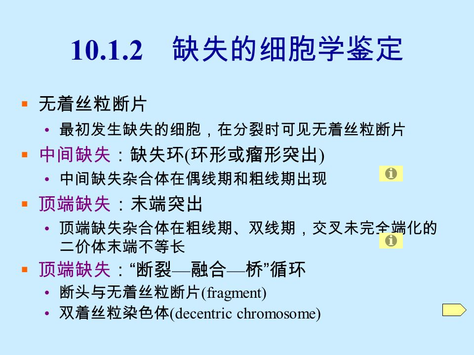 双着丝粒( decentric1chrm )染色体