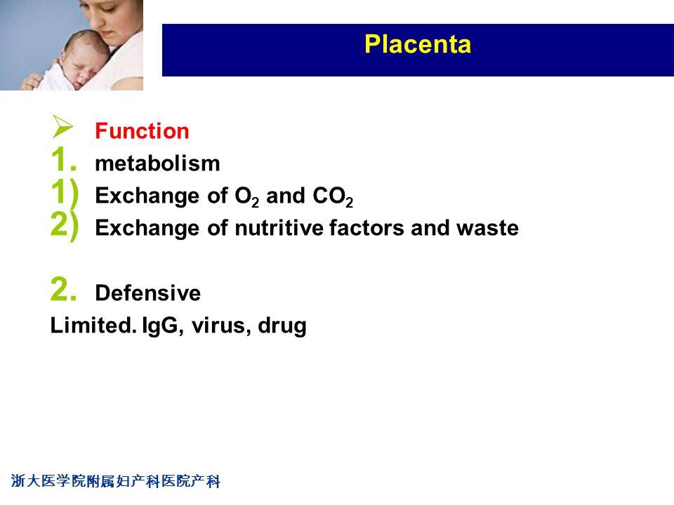 浙大医学院附属妇产科医院产科 Company LOG Placenta  Function 1.