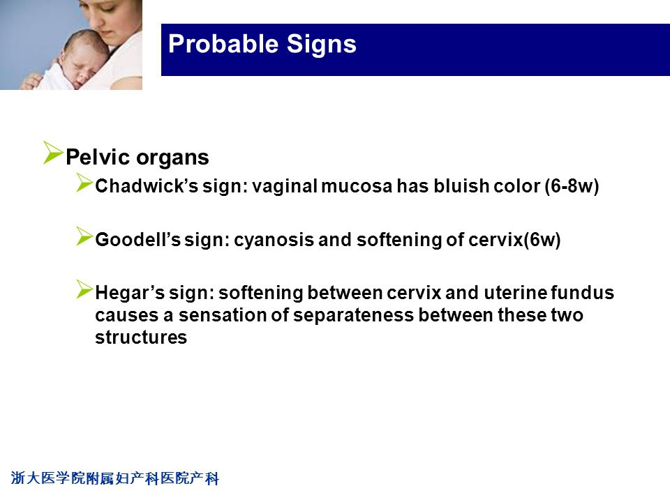 浙大医学院附属妇产科医院产科 Company LOG Probable Signs  Pelvic organs  Chadwick's sign: vaginal mucosa has bluish color (6-8w)  Goodell's sign: cyanosis and softening of cervix(6w)  Hegar's sign: softening between cervix and uterine fundus causes a sensation of separateness between these two structures