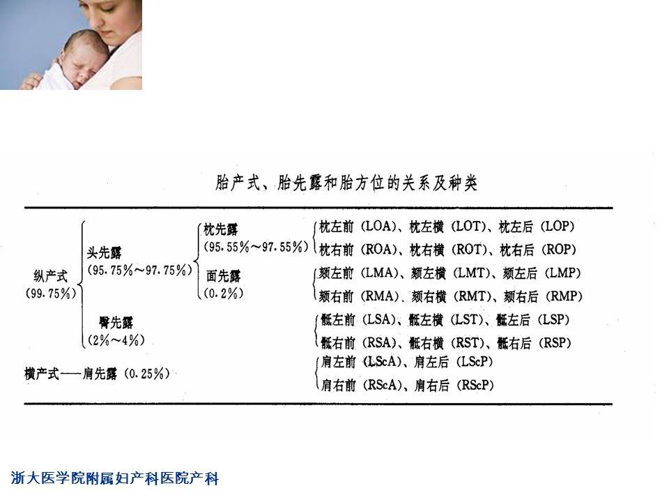 浙大医学院附属妇产科医院产科 Company LOG