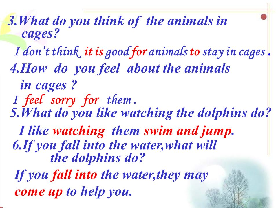Read and answer They have nothing to do.They walk round and round in the cages 1.