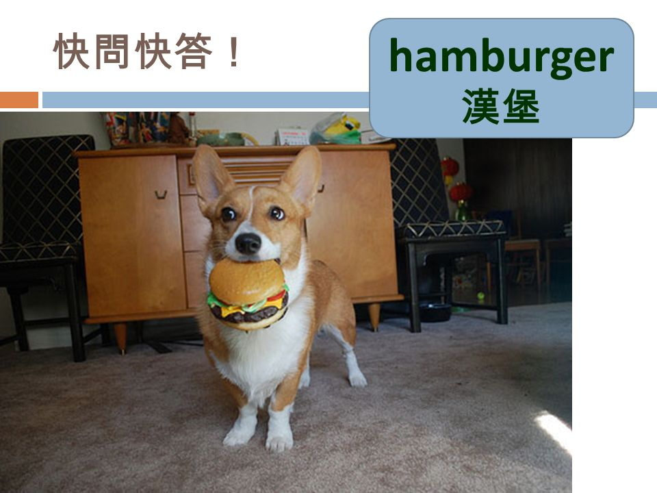快問快答! hamburger 漢堡