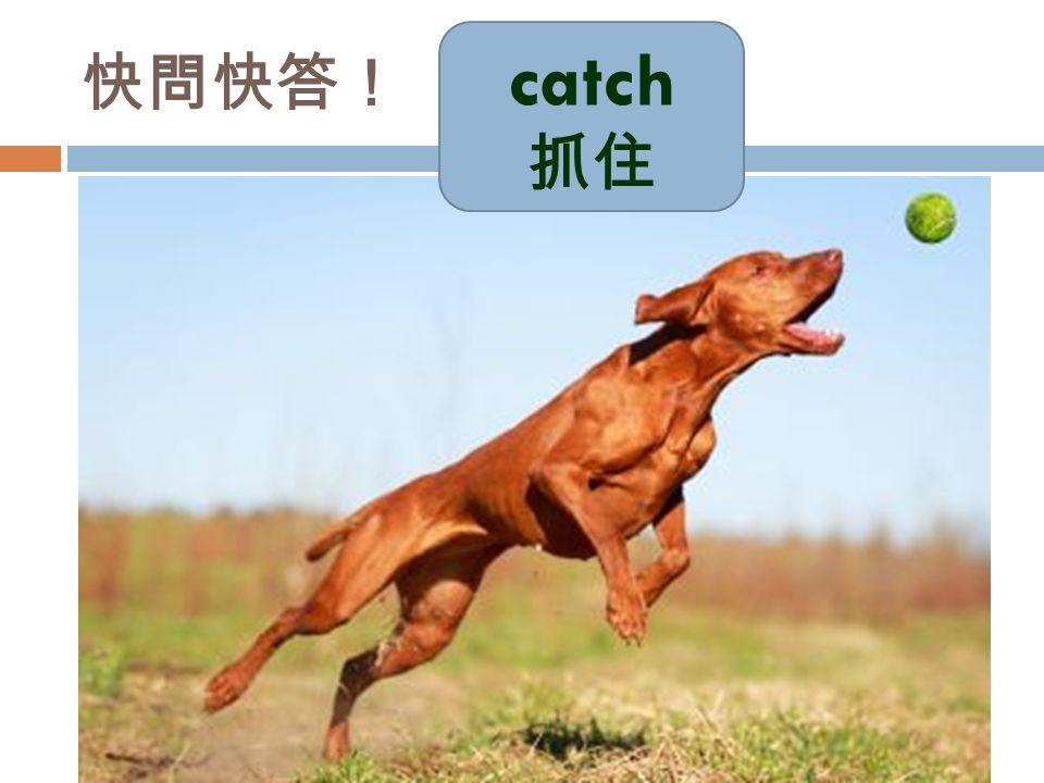 catch 抓住