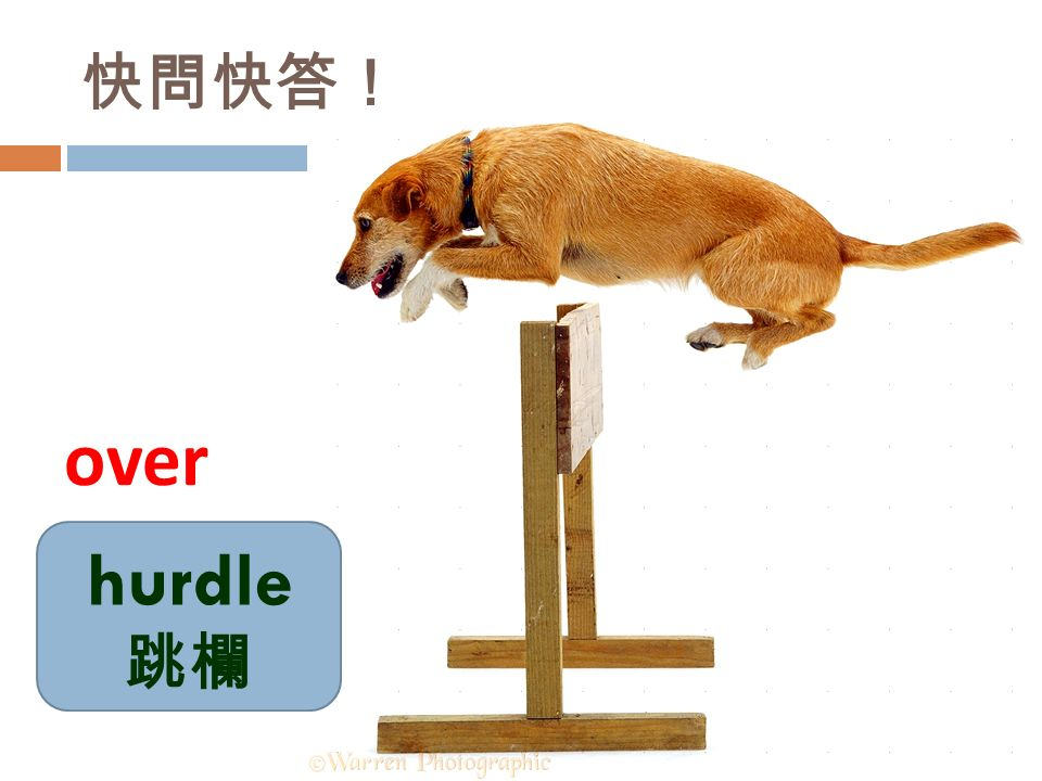 快問快答! hurdle 跳欄 over