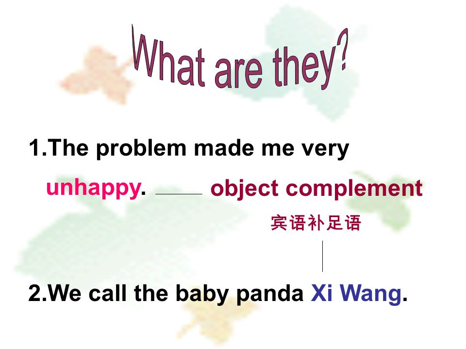 1.The problem made me very unhappy. 2.We call the baby panda Xi Wang. object complement 宾语补足语