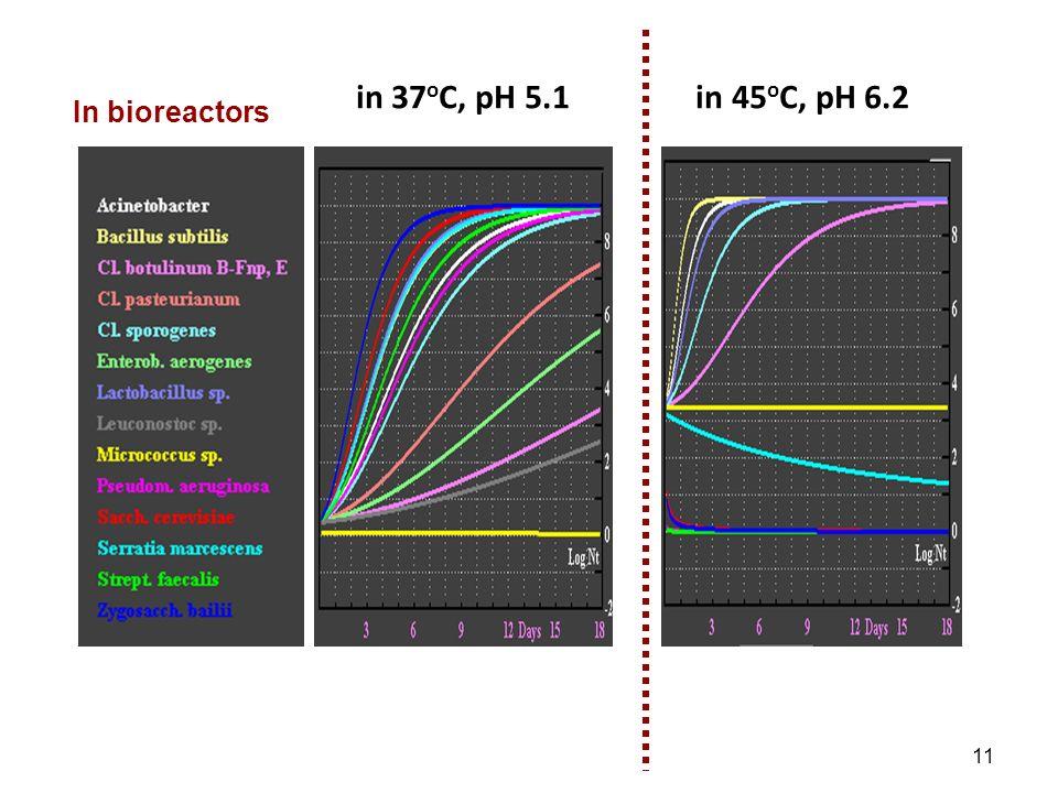 in 37 o C, pH 5.1 in 45 o C, pH 6.2 In bioreactors 11