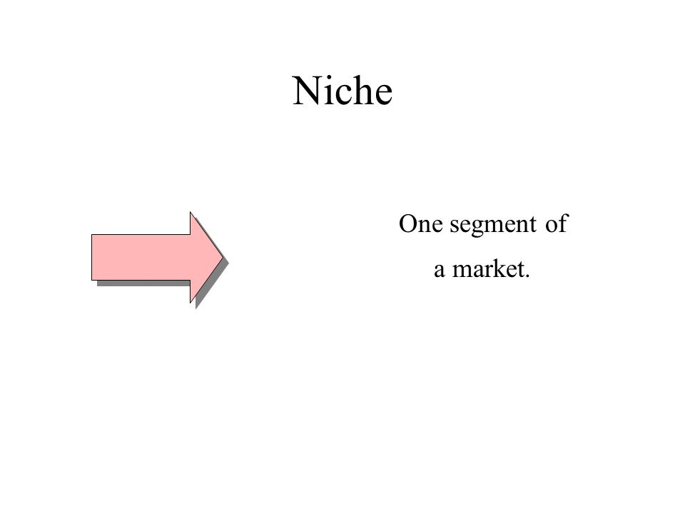 Niche One segment of a market.