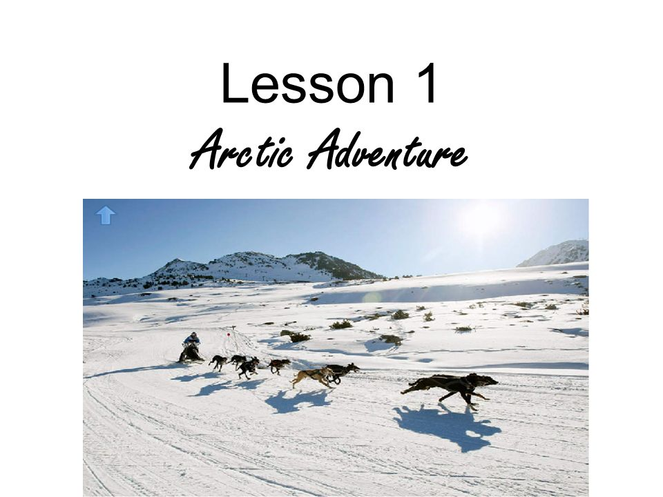 Lesson 1 Arctic Adventure