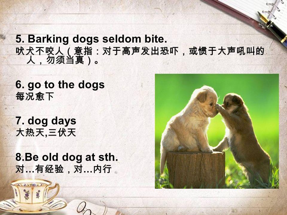 5. Barking dogs seldom bite. 吠犬不咬人(意指:对于高声发出恐吓,或惯于大声吼叫的 人,勿须当真)。 6.