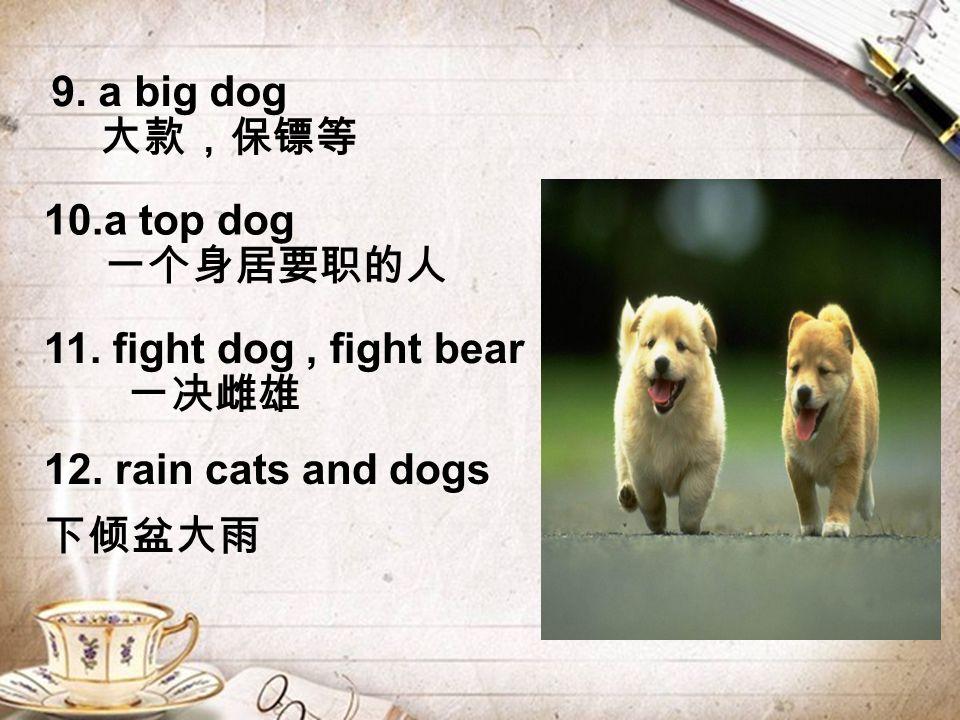 12. rain cats and dogs 下倾盆大雨 9. a big dog 大款,保镖等 10.a top dog 一个身居要职的人 11.