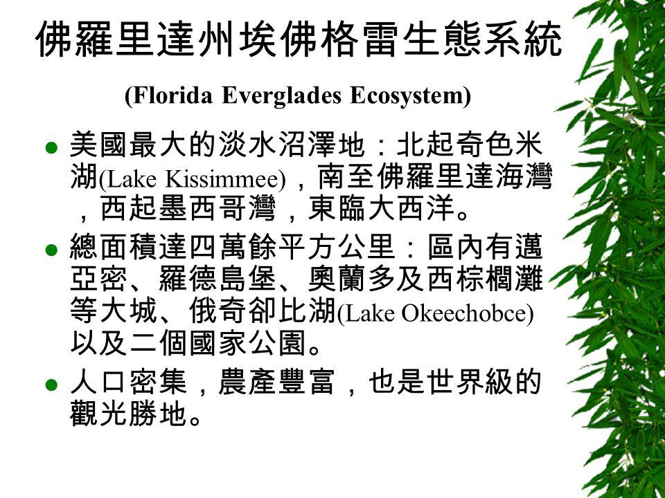 佛羅里達州埃佛格雷生態系統 (Florida Everglades Ecosystem) 美國最大的淡水沼澤地:北起奇色米 湖 (Lake Kissimmee) ,南至佛羅里達海灣 ,西起墨西哥灣,東臨大西洋。 總面積達四萬餘平方公里:區內有邁 亞密、羅德島堡、奧蘭多及西棕櫚灘 等大城、俄奇卻比湖 (Lake Okeechobce) 以及二個國家公園。 人口密集,農產豐富,也是世界級的 觀光勝地。