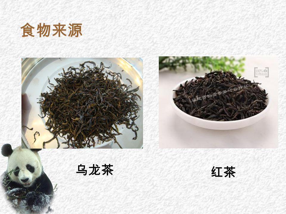 食物来源 乌龙茶 红茶