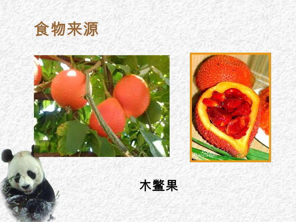 食物来源 木鳖果