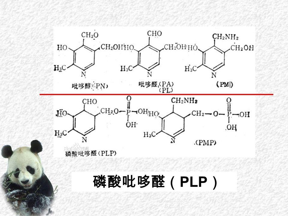 磷酸吡哆醛( PLP )
