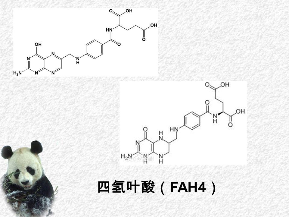 四氢叶酸( FAH4 )