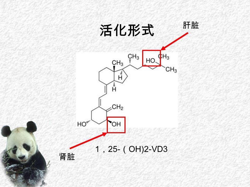 1 , 25- ( OH)2-VD3 活化形式 肝脏 肾脏