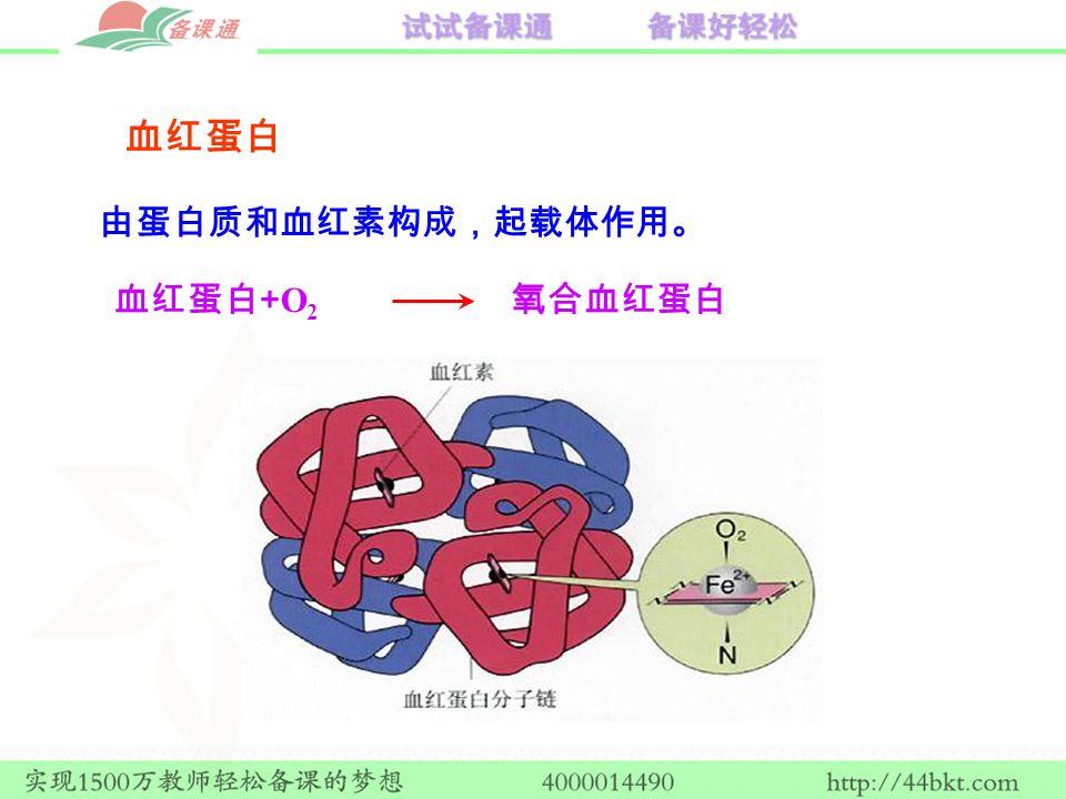 由蛋白质和血红素构成,起载体作用。 血红蛋白 + O 2 氧合血红蛋白 血红蛋白
