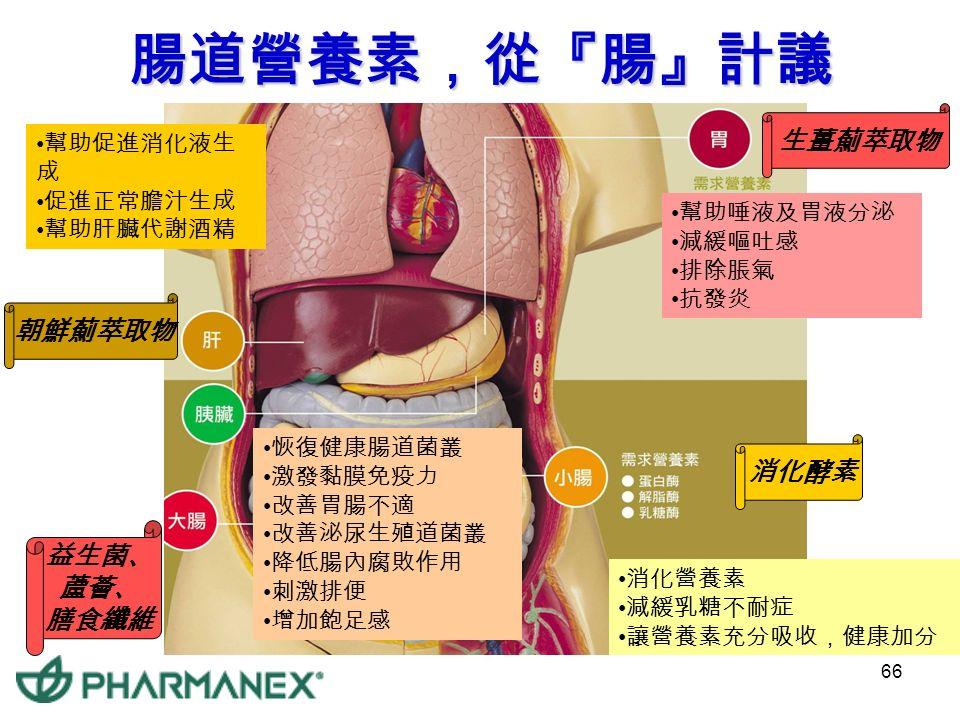 65 補充益菌 腸道不老化 乳酸菌 / 腐敗菌 好菌與壞菌的戰爭