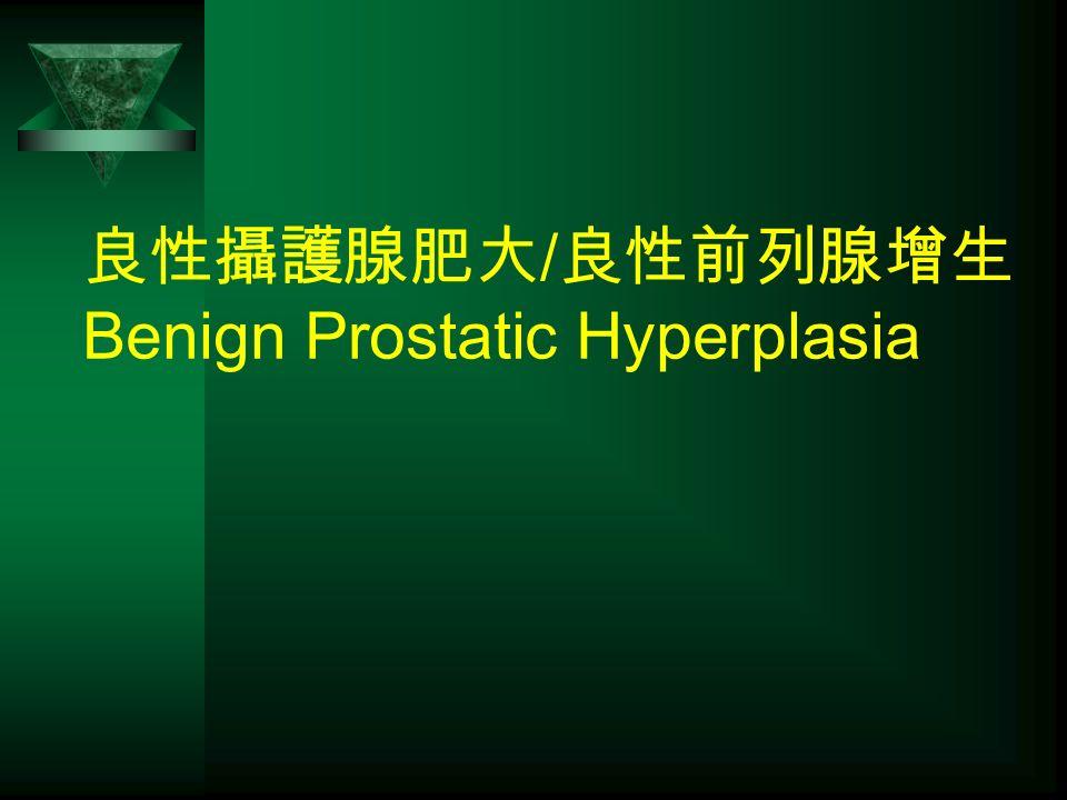 良性攝護腺肥大 / 良性前列腺增生 Benign Prostatic Hyperplasia