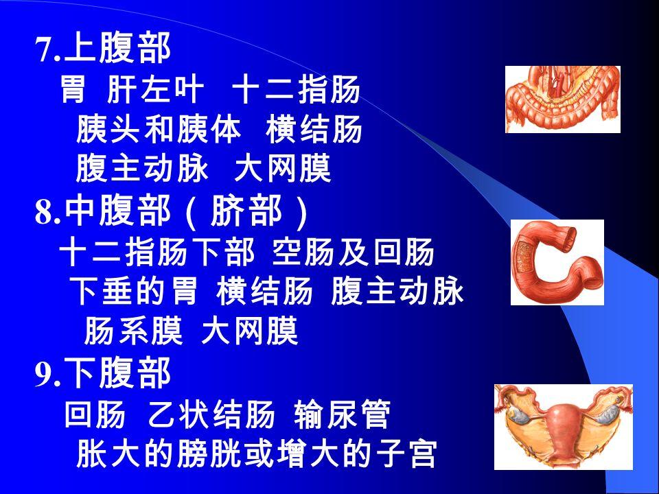 7. 上腹部 胃 肝左叶 十二指肠 胰头和胰体 横结肠 腹主动脉 大网膜 8. 中腹部(脐部) 十二指肠下部 空肠及回肠 下垂的胃 横结肠 腹主动脉 肠系膜 大网膜 9.