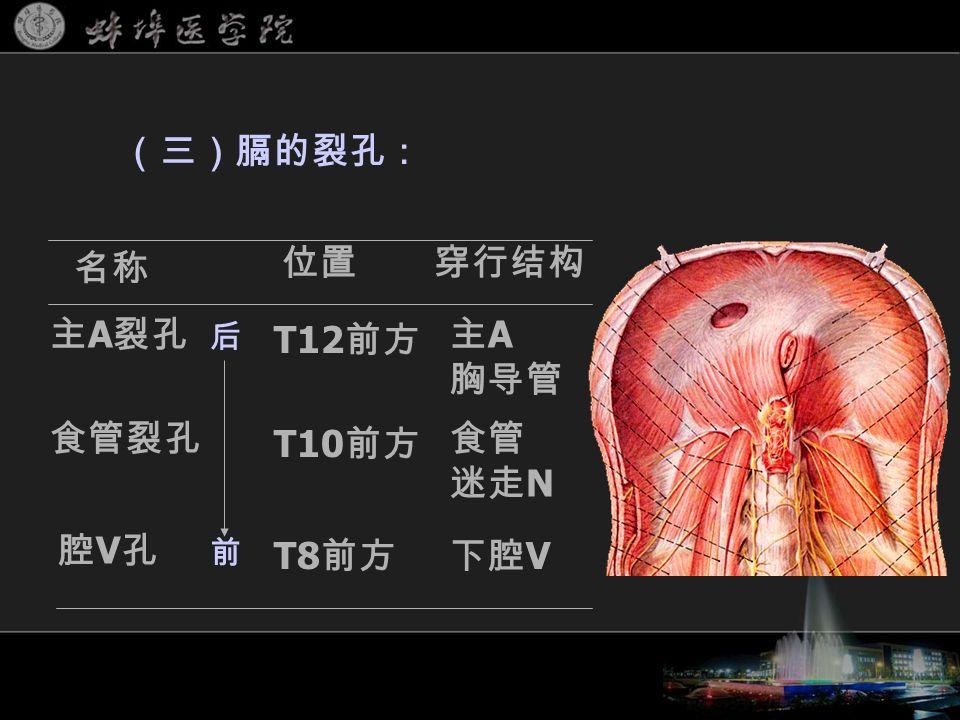 (三)膈的裂孔: 名称 穿行结构位置 主 A 裂孔 食管裂孔 腔V孔腔V孔 主 A 胸导管 食管 迷走 N 下腔 V T12 前方 T10 前方 T8 前方 后 前