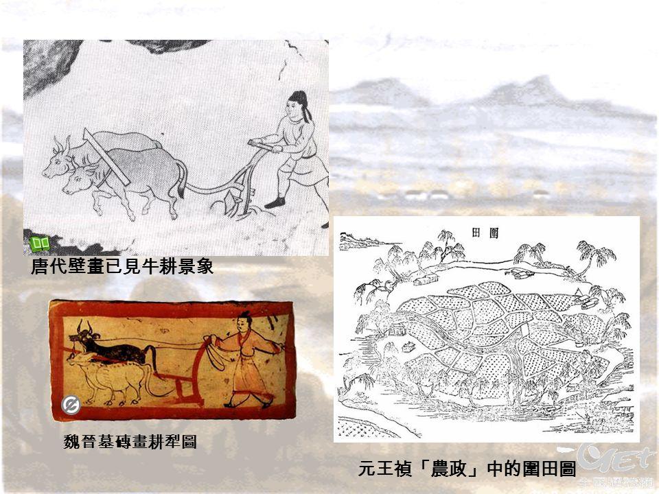 元王禎「農政」中的圍田圖 唐代壁畫已見牛耕景象 魏晉墓磚畫耕犁圖 
