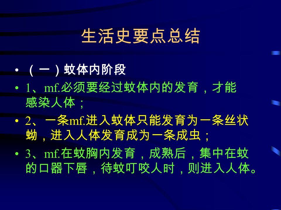生活史要点总结 (一)蚊体内阶段 1 、 mf. 必须要经过蚊体内的发育,才能 感染人体; 2 、一条 mf.