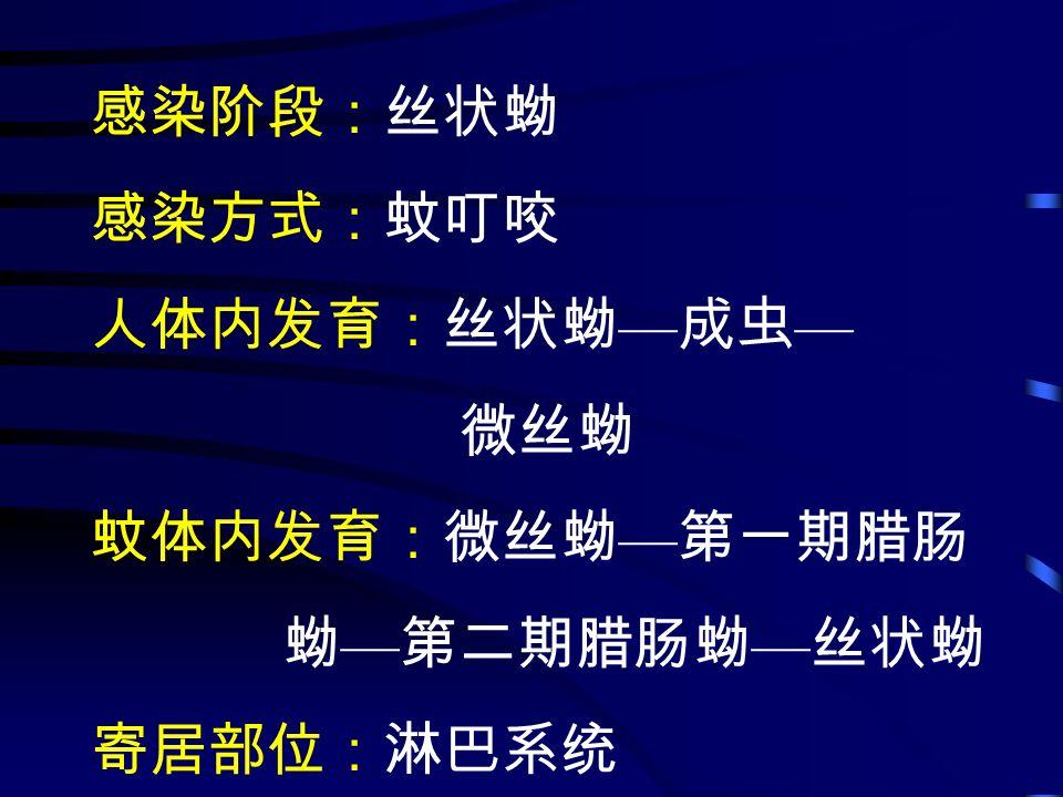 感染阶段:丝状蚴 感染方式:蚊叮咬 人体内发育:丝状蚴 — 成虫 — 微丝蚴 蚊体内发育:微丝蚴 — 第一期腊肠 蚴 — 第二期腊肠蚴 — 丝状蚴 寄居部位:淋巴系统