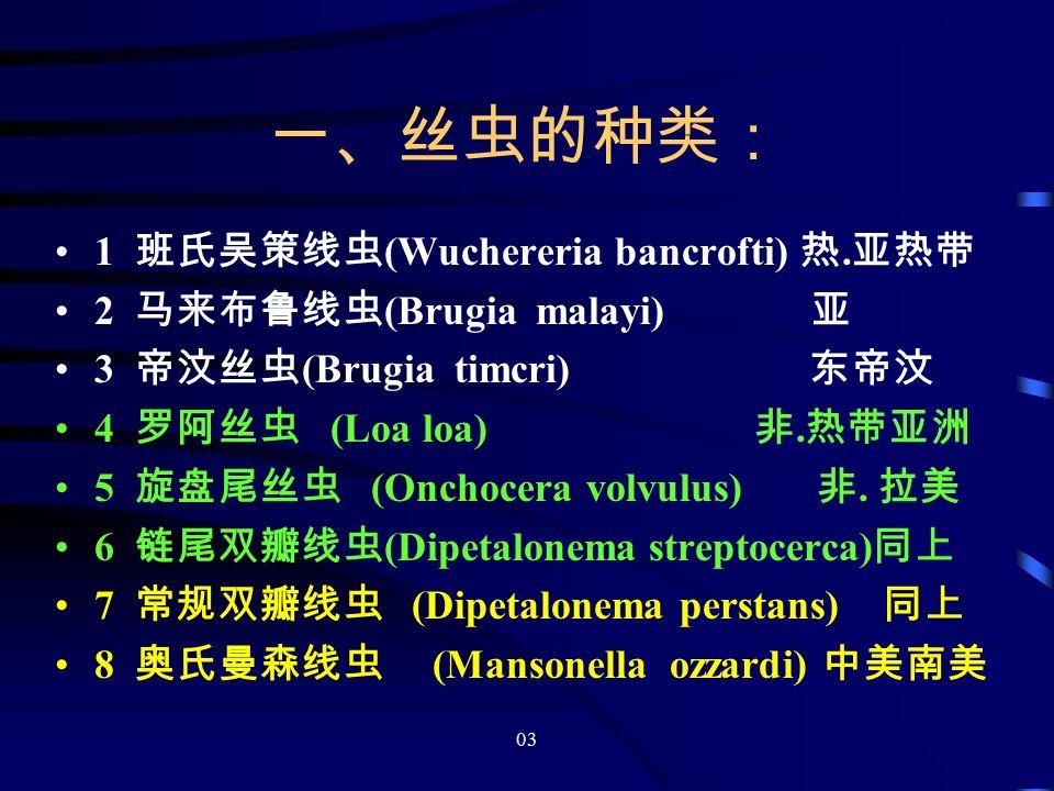 03 一、丝虫的种类: 1 班氏吴策线虫 (Wuchereria bancrofti) 热.