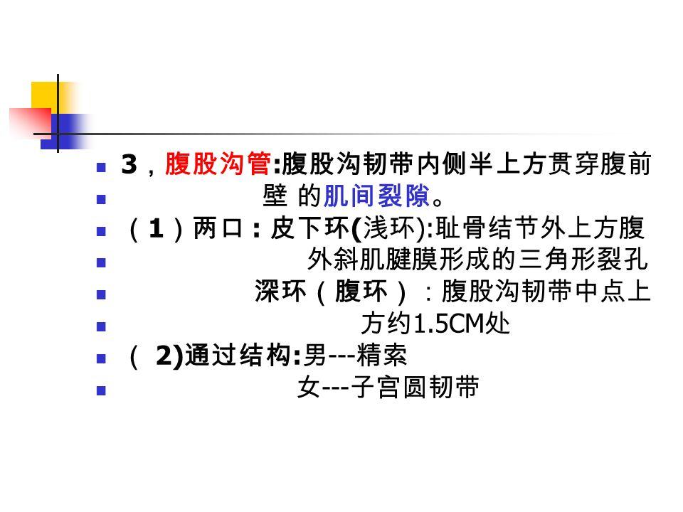 3 ,腹股沟管 : 腹股沟韧带内侧半上方贯穿腹前 壁 的肌间裂隙。 ( 1 )两口 : 皮下环 ( 浅环 ): 耻骨结节外上方腹 外斜肌腱膜形成的三角形裂孔 深环(腹环):腹股沟韧带中点上 方约 1.5CM 处 ( 2) 通过结构 : 男 --- 精索 女 --- 子宫圆韧带