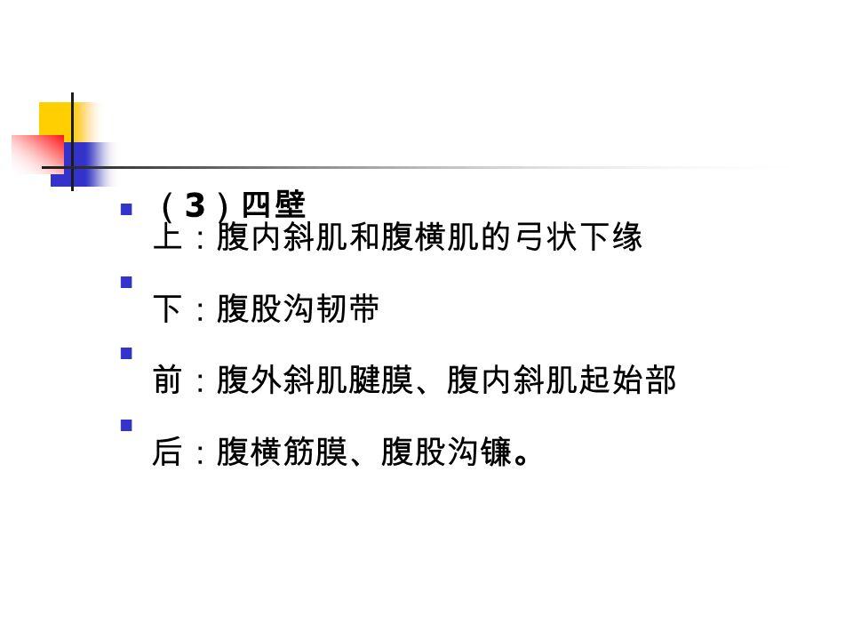 ( 3 )四壁 上:腹内斜肌和腹横肌的弓状下缘 下:腹股沟韧带 前:腹外斜肌腱膜、腹内斜肌起始部 后:腹横筋膜、腹股沟镰。