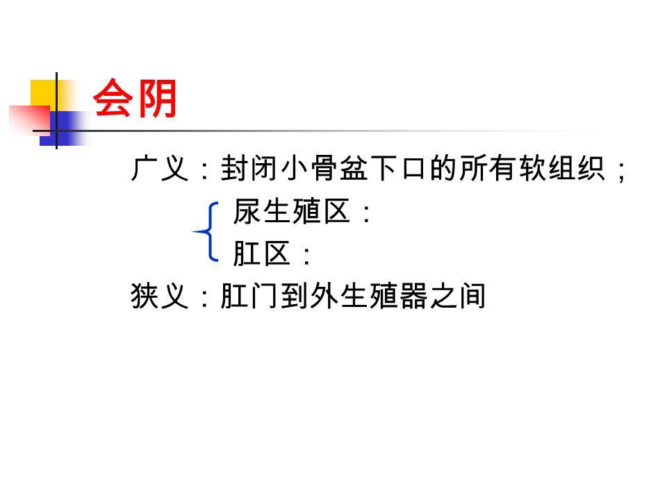 会阴 广义:封闭小骨盆下口的所有软组织; 尿生殖区: 肛区: 狭义:肛门到外生殖器之间